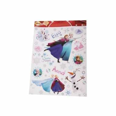 Disney frozen venster stickers